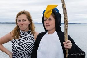 NB_penguin-3