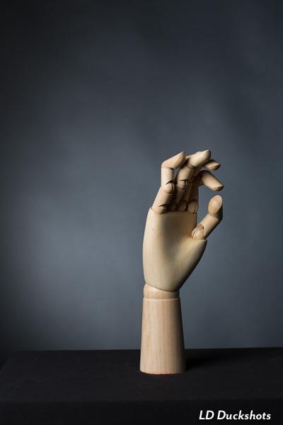 trumpskys-finger-1